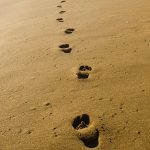 Ключови стъпки за привличане на клиенти